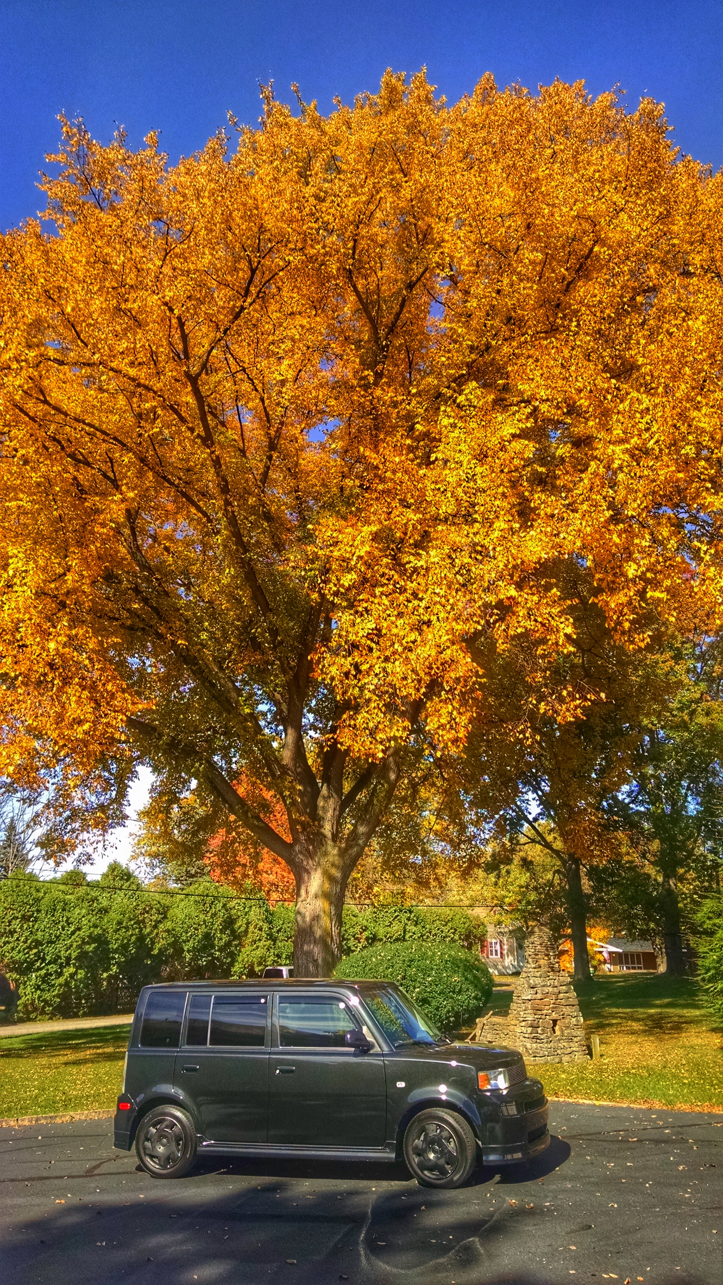 2005 Scion xB during Fall